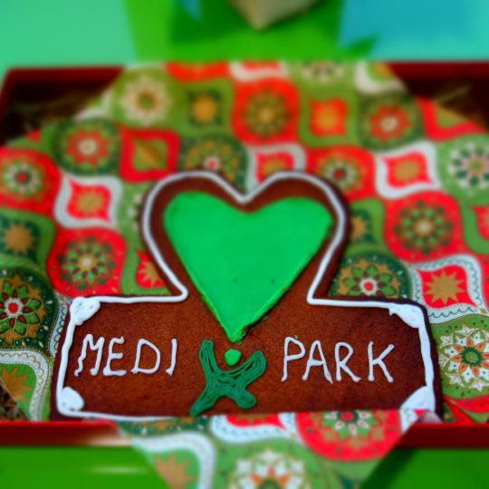 http://www.medipark.pl/wp-content/uploads/2015/11/DSC03381-540x540.jpg